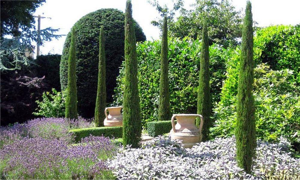 SPECIAL DEAL - Pair of Van Gogh Tuscan Totem Pole Cypress Trees ...