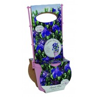 Sweet Pea Trellis Grow set - Villa Roma Blue