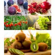 SPECIAL DEAL - Patio Fruit Garden (Pomegranate, Fig, Kiwi, Grapes & Goji Berry)