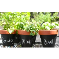 Trio Terracotta Chalk Pots - Herb Growing Gift Set