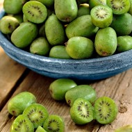 Kiwi Berry - Actinidia arguta Issai - Fuzz Free Kiwi Berry